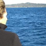 whale watching10