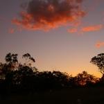 tramonto_nel_bush2
