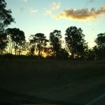 tramonto_nel_bush6