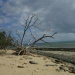 spiagge_e_mare2