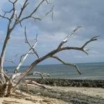 spiagge_e_mare3