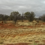 outback10