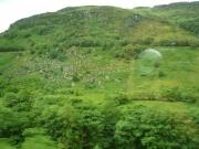 gita_nelle_highlands19