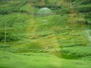 gita_nelle_highlands20