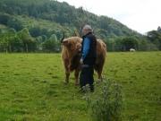 gita_nelle_highlands9