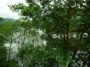 gita_nelle_highlands14