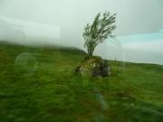 gita_nelle_highlands32