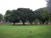 delhi_mausoleo_humayun_24
