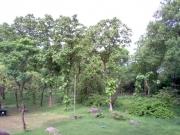 khajurao__templi_33