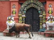 kathmandu_durbar_square_31