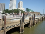 new-orleans-133