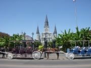 new-orleans-157