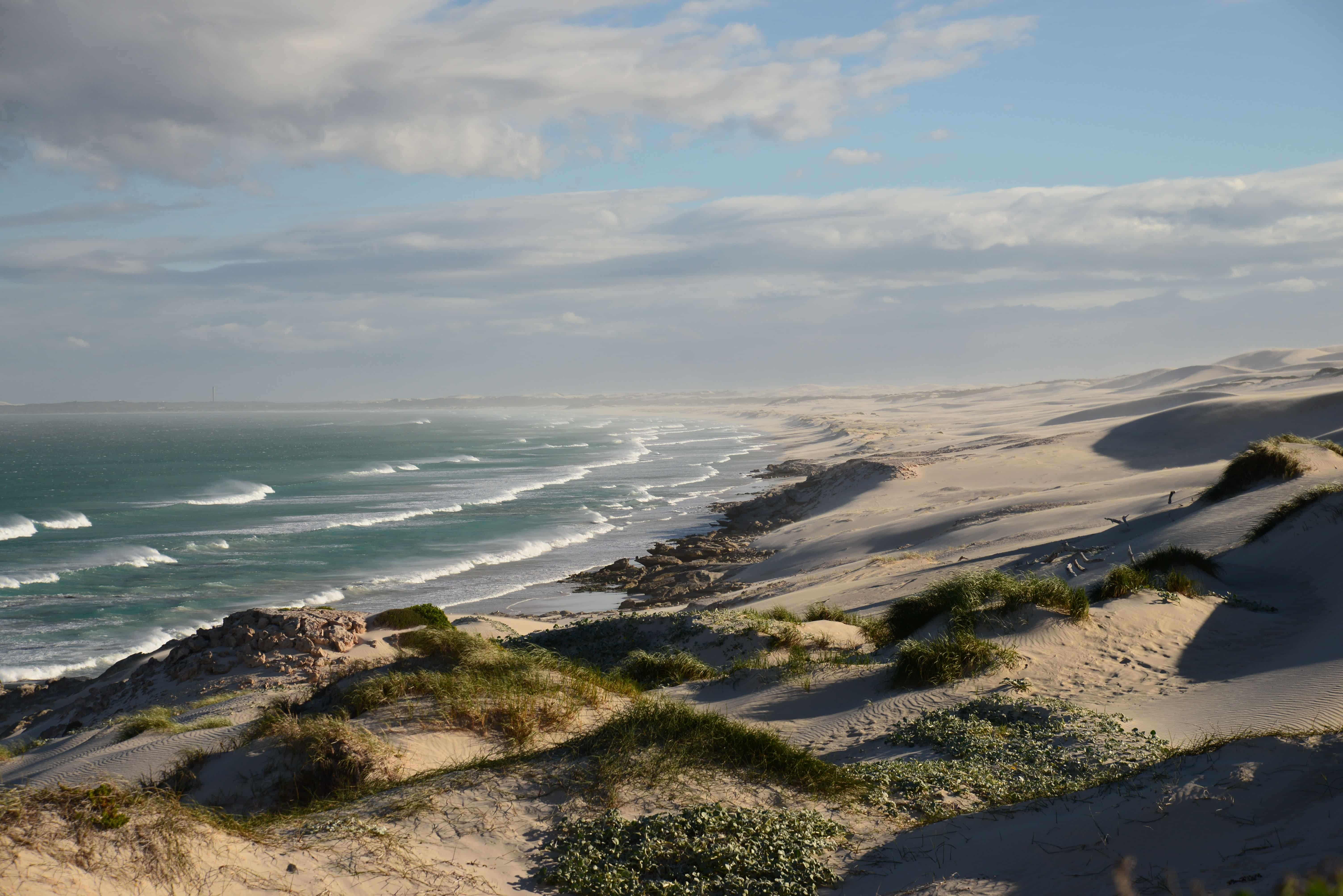 towards De Hoop
